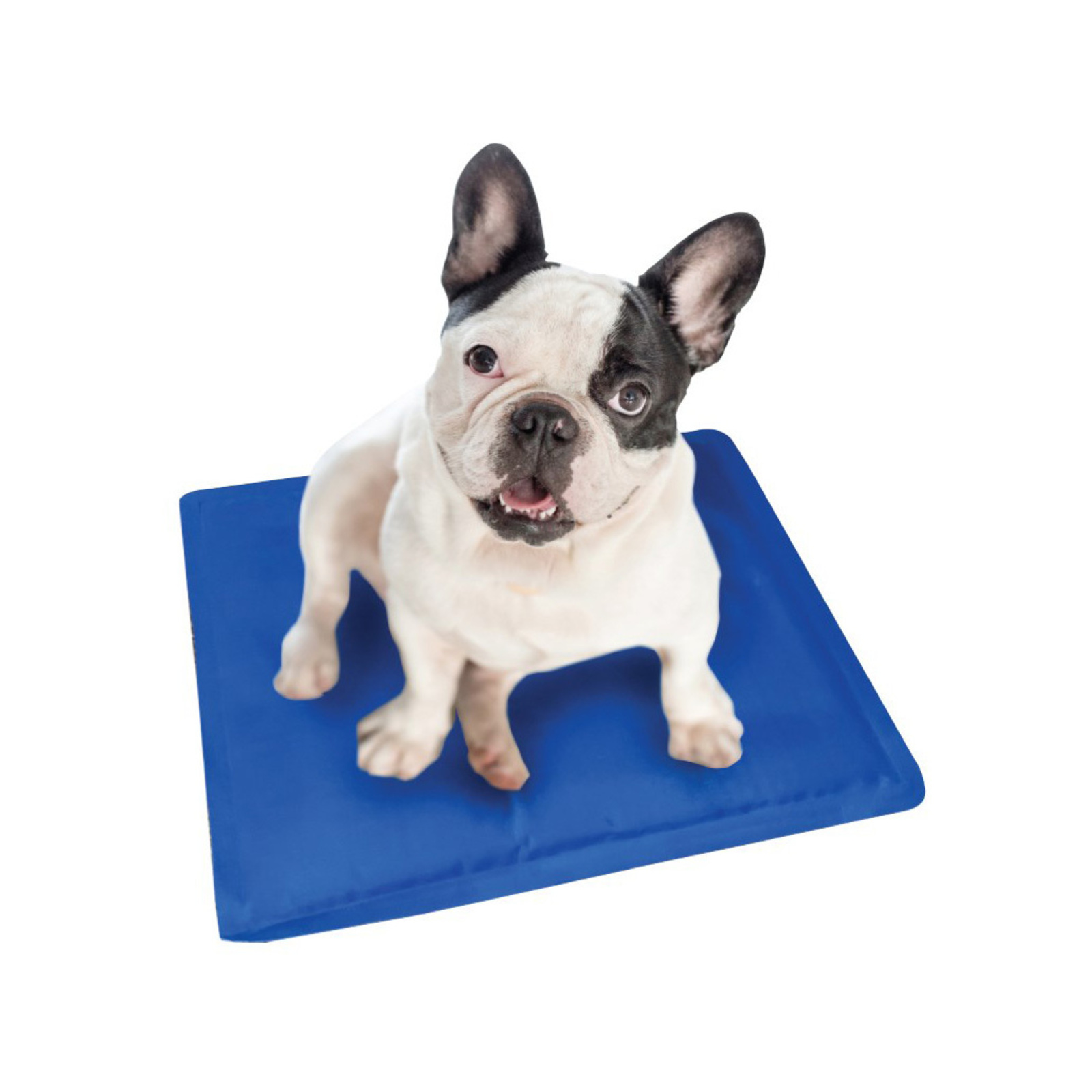 Paws & Claws 30cm Waterproof Pet/Dog/Cat Heating/Cooling Gel Mat/Pad/Cushion SM