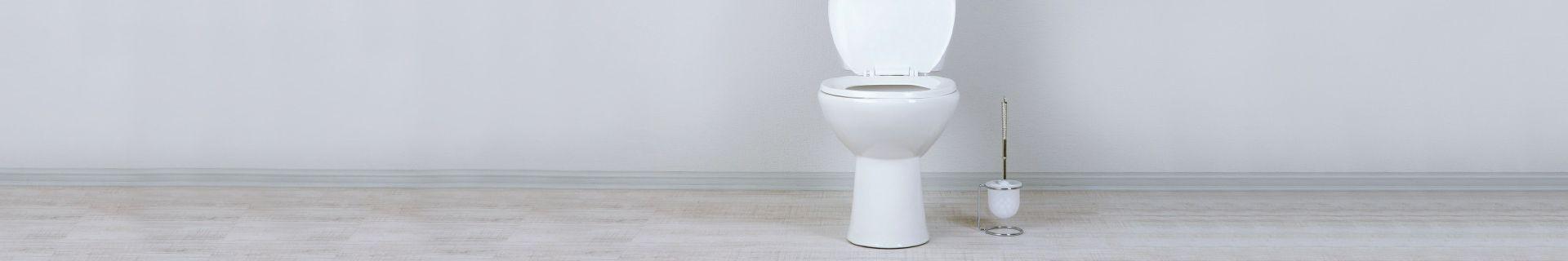 Toilet with toilet brush