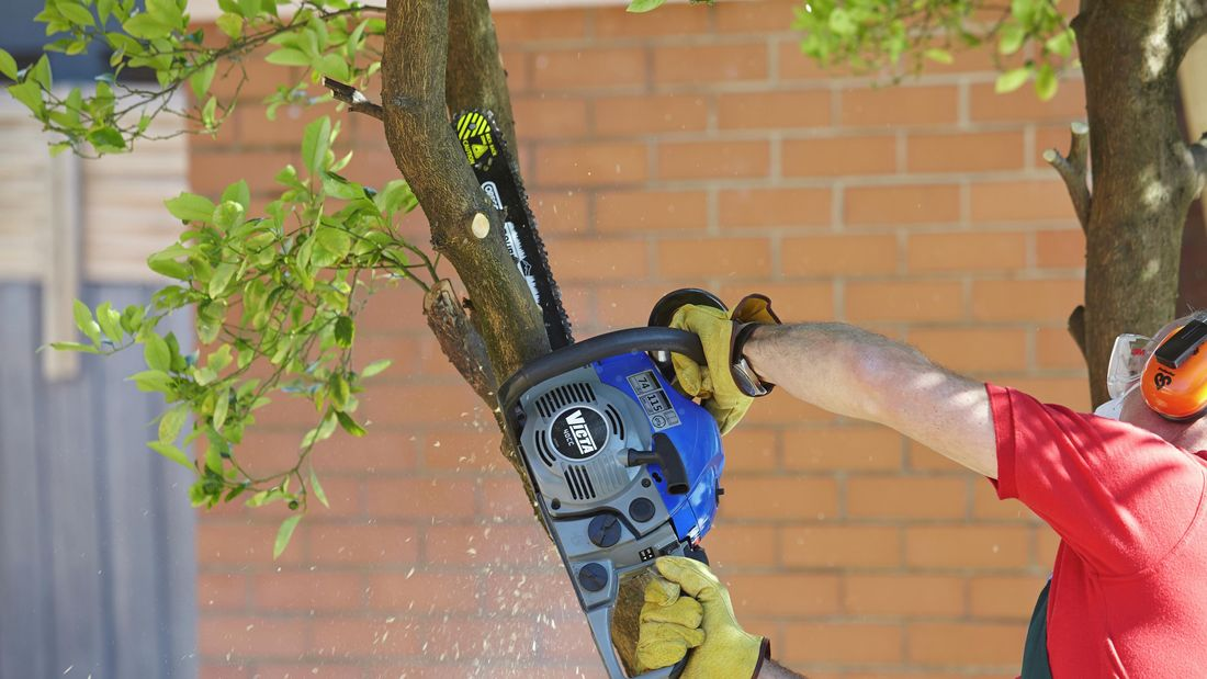 DIY Step Image - How to remove a tree . Blob storage upload.