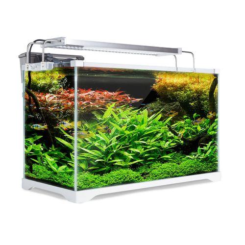 Aquarium Starfire Glass Fish Tank Set Filter Pump 39L