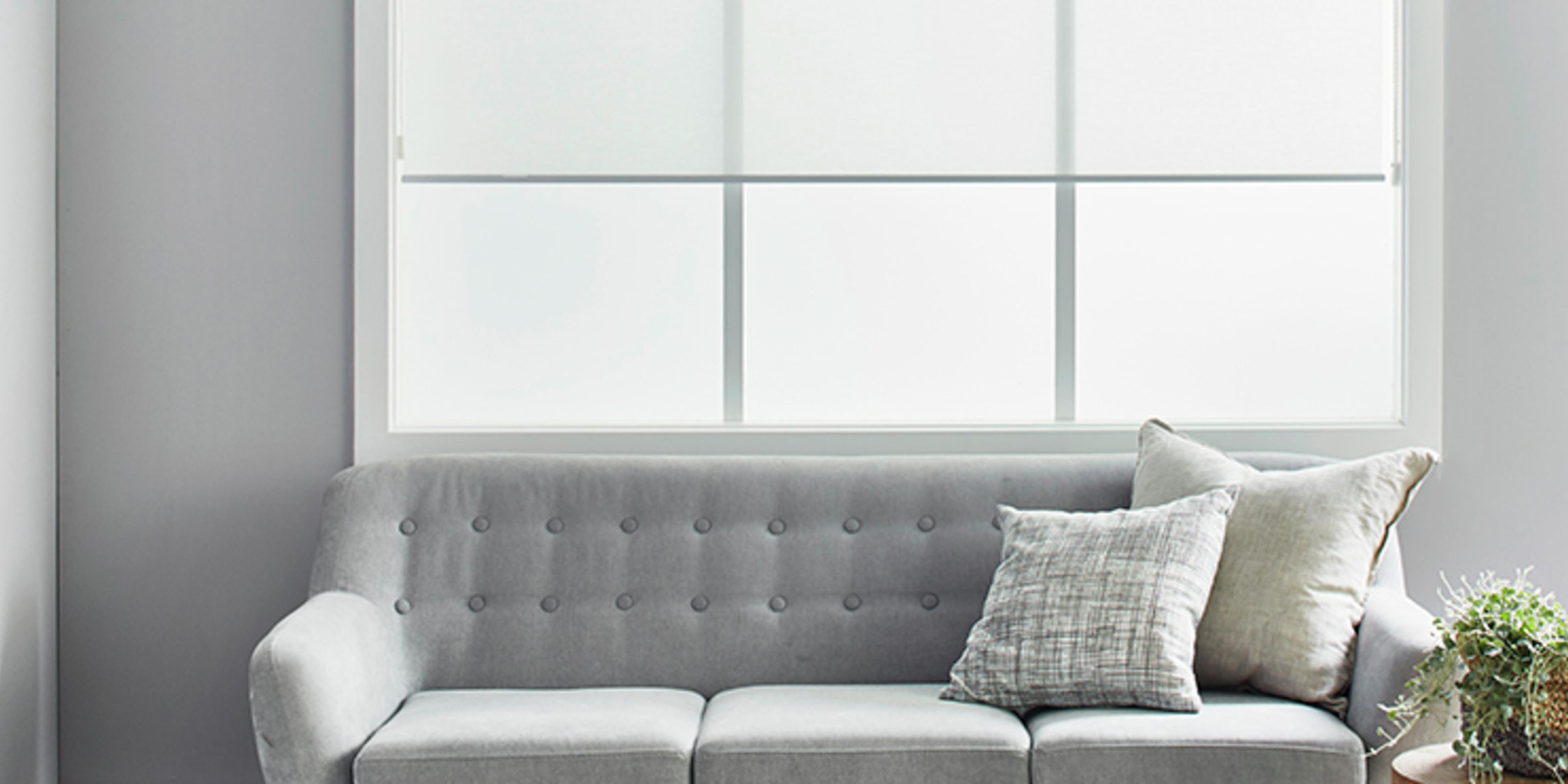 Living room with a grey couch with pillows and a pot plant in front of large windows