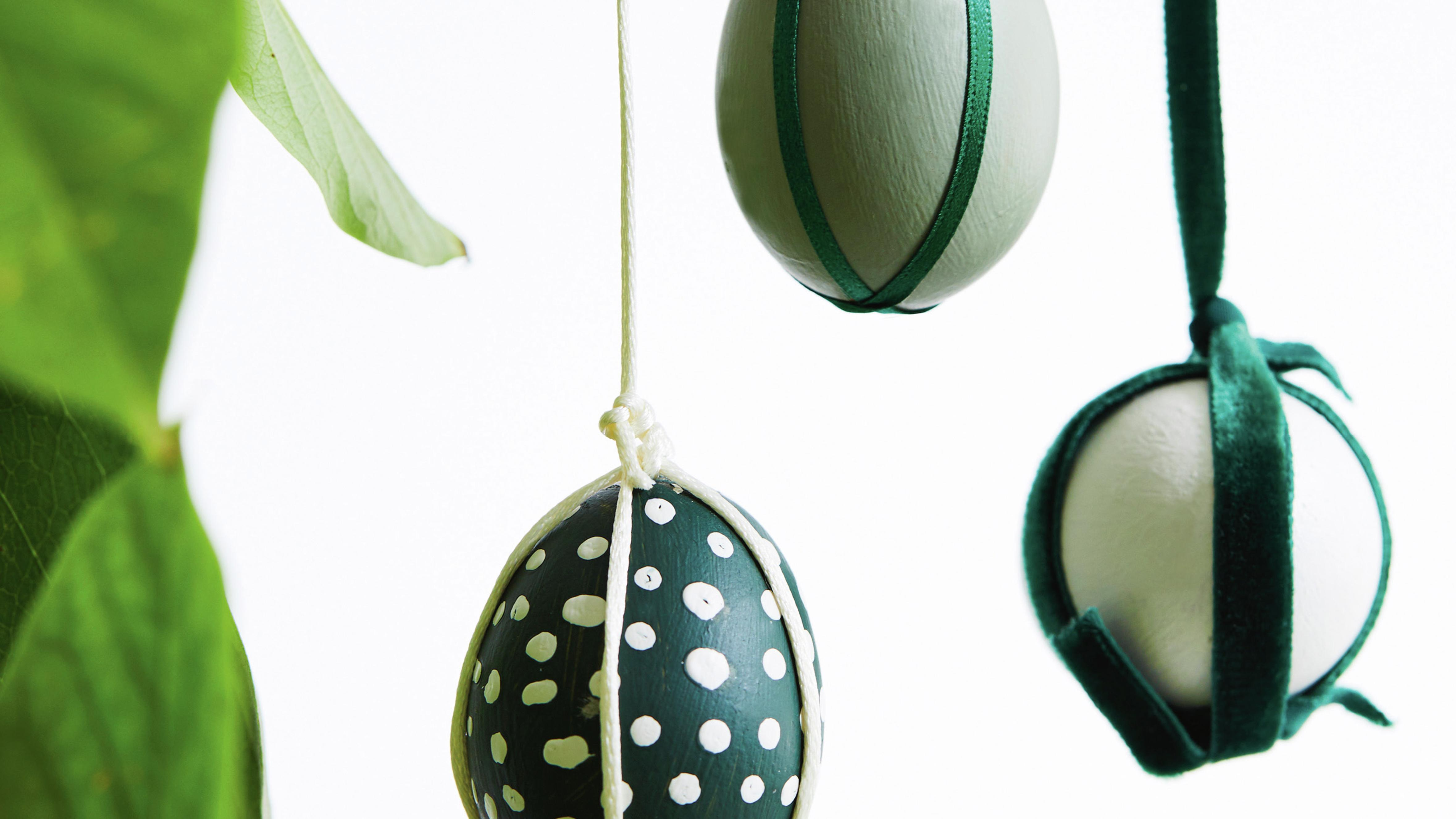 Decorated easter eggs hanging on a plant.