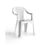 Plastic & Resin Chairs