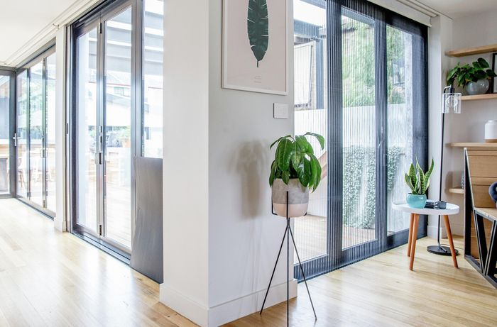 Light-filled hallway with timber floorboards and a pot plant