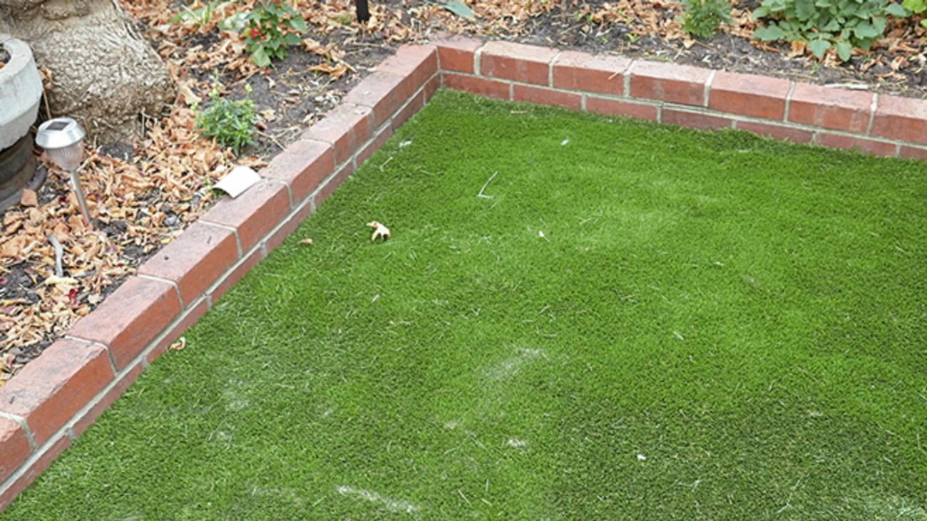 Fake grass.
