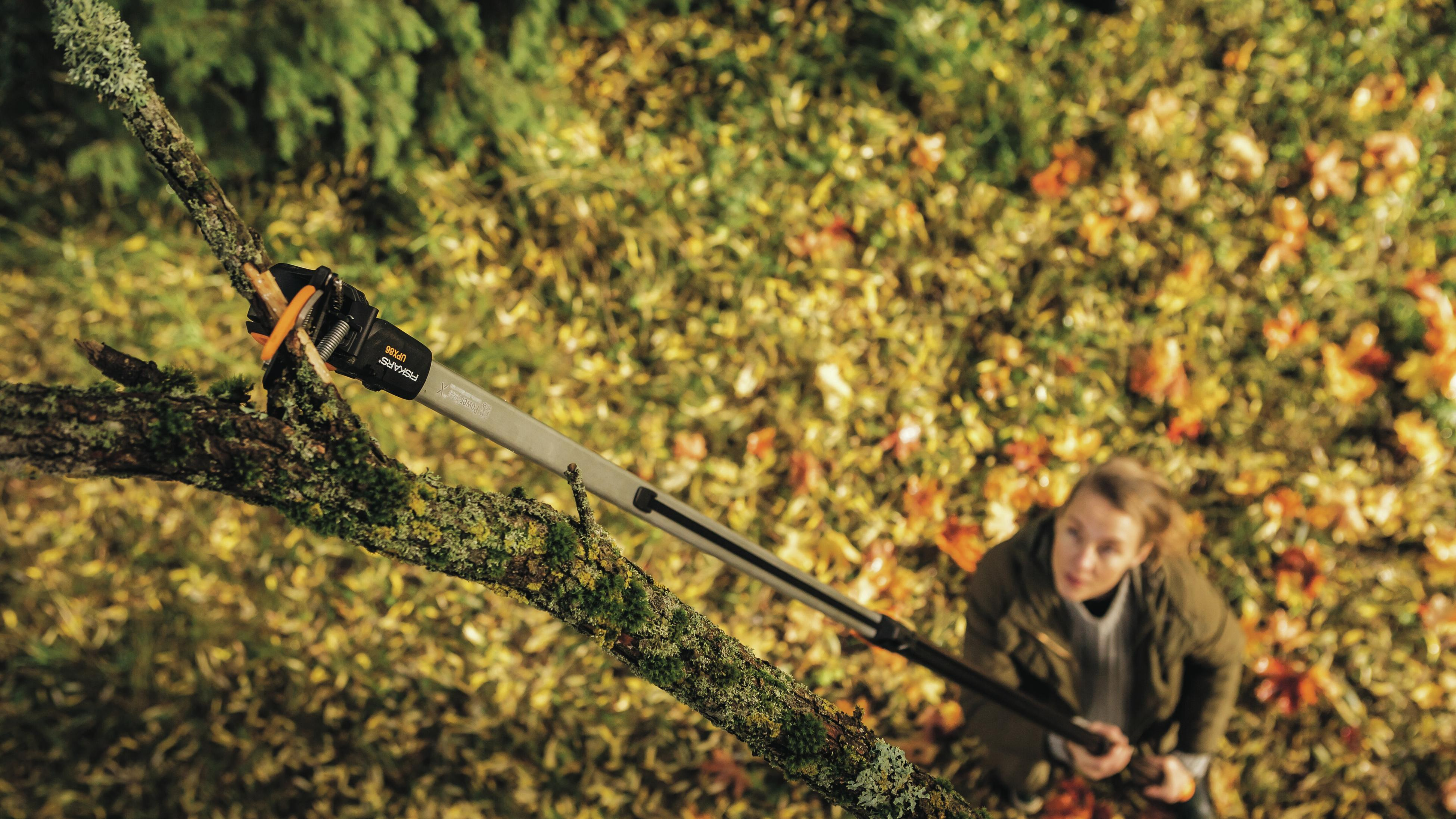 A woman using a tree pruner to cut off a brand.