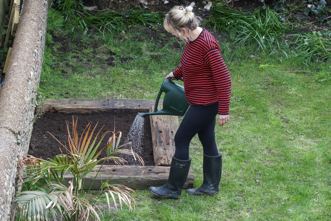 A person watering a garden bed using a watering can