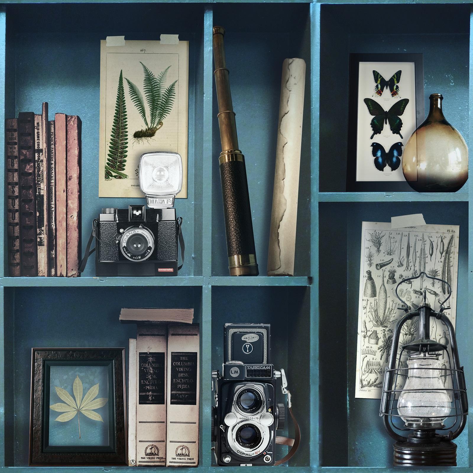 Superfresco Easy 52cm x 10m Curiosite Biblio Bleu Wallpaper