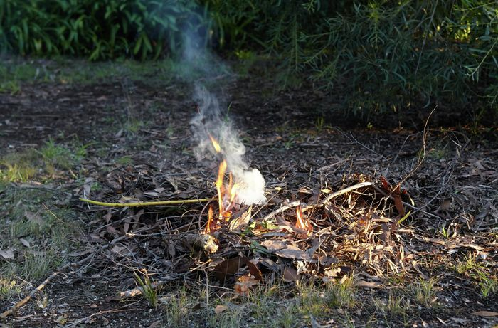 A small fire burning in dry leaves and twigs in bushland