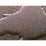 Moisture Resistant Particle Board