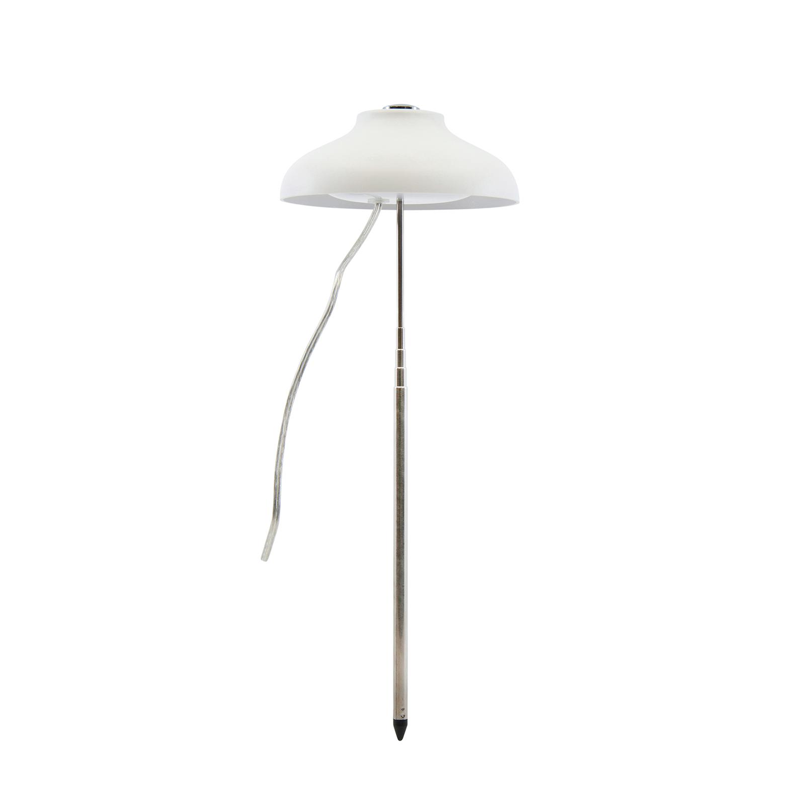 Home Grown Indoor Umbrella Grow Light Adjustable