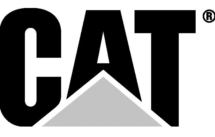 Cat Tools logo