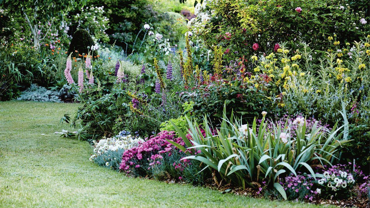A garden of flowering plants bordering a lawn
