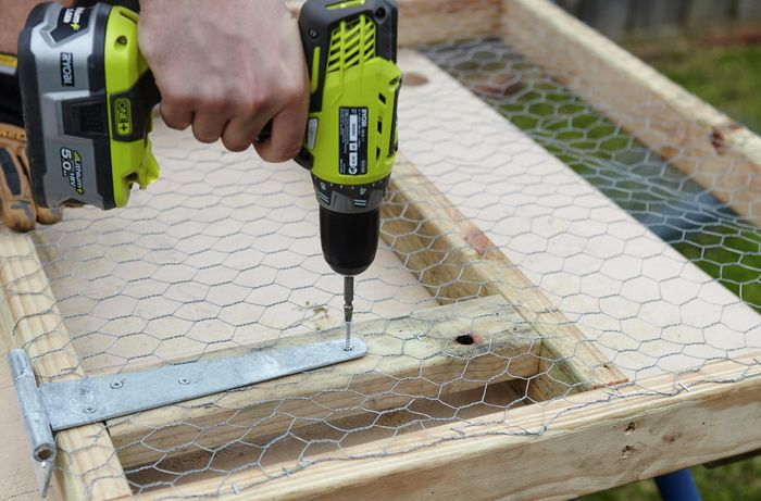 A hinge being screwed into place on a wooden frame as part of a chicken coop hatch
