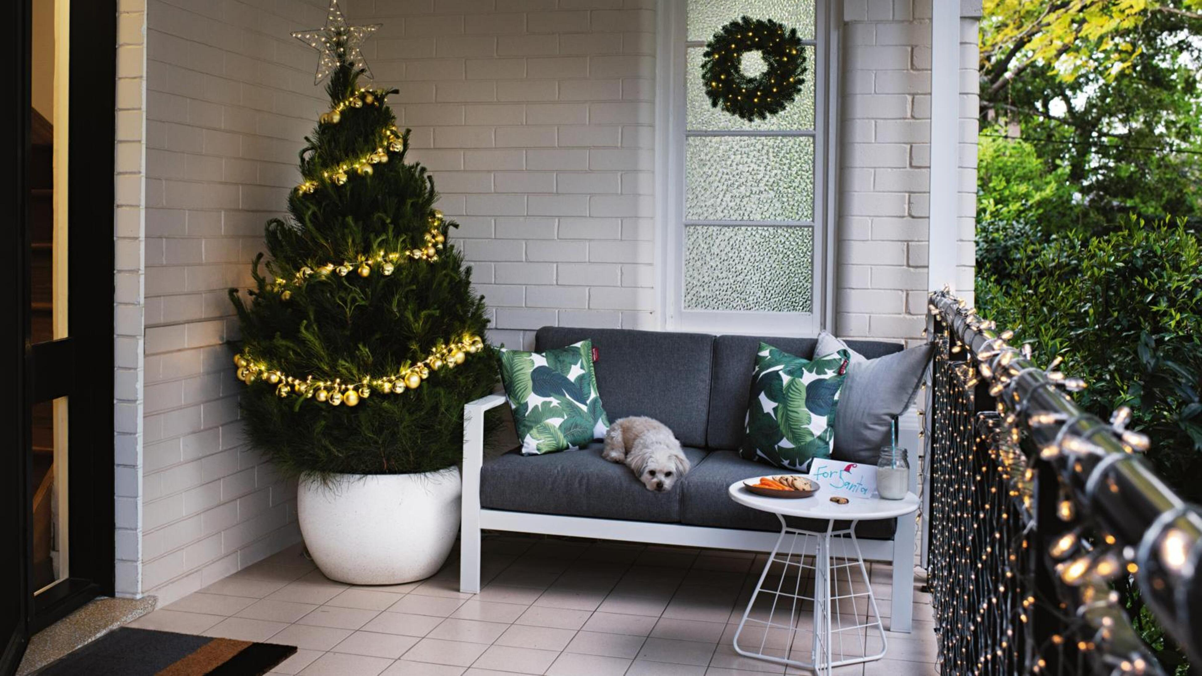 Christmas tree, couch, dog on balcony.