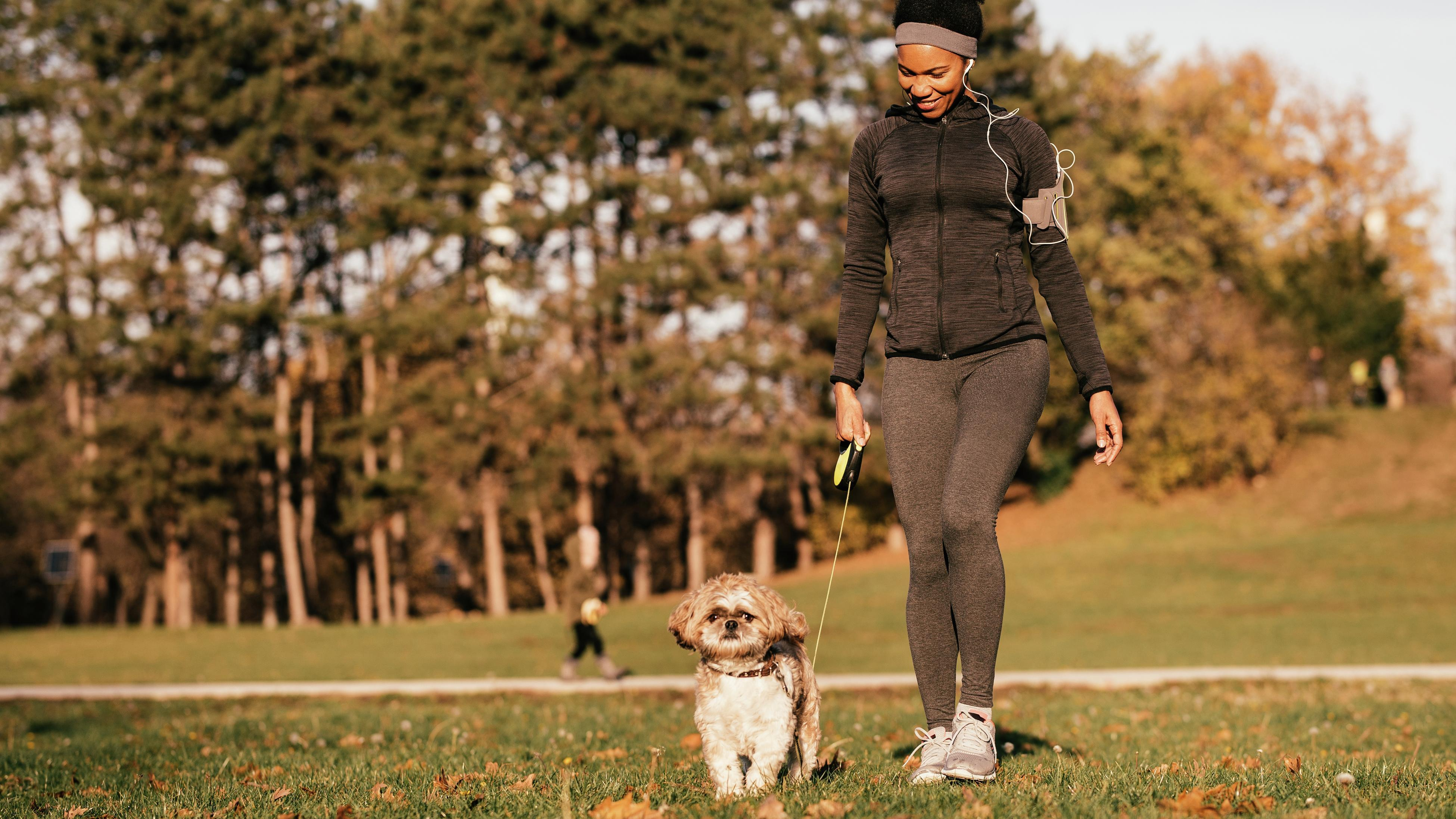 Person walking a small dog.