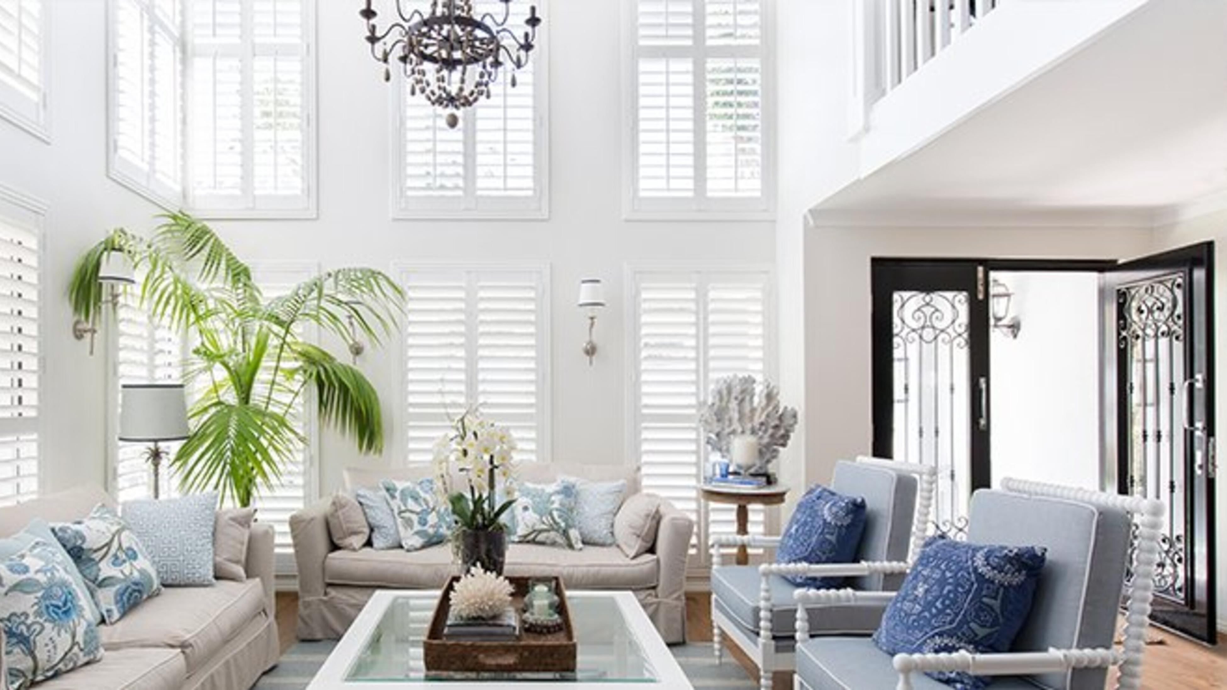 A Hamptons style living area with couches, armchairs, a large palm tree, white shutter windows and a chandelier.