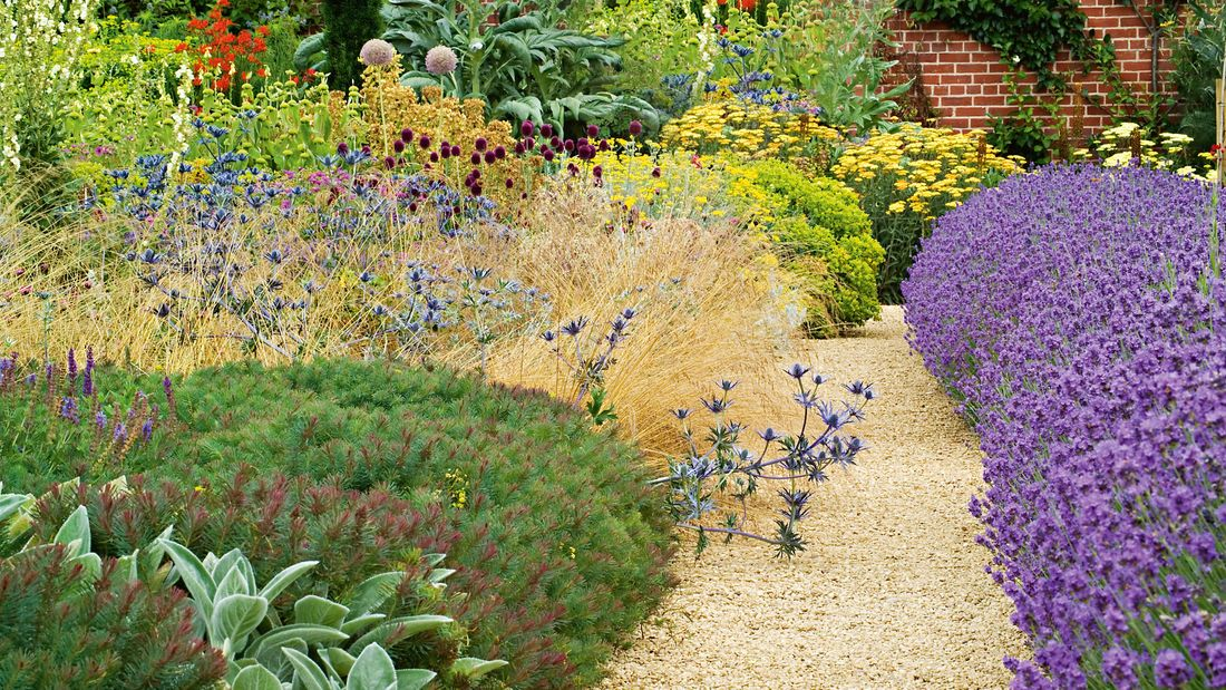 A gravel pathway leading down between two large full garden beds