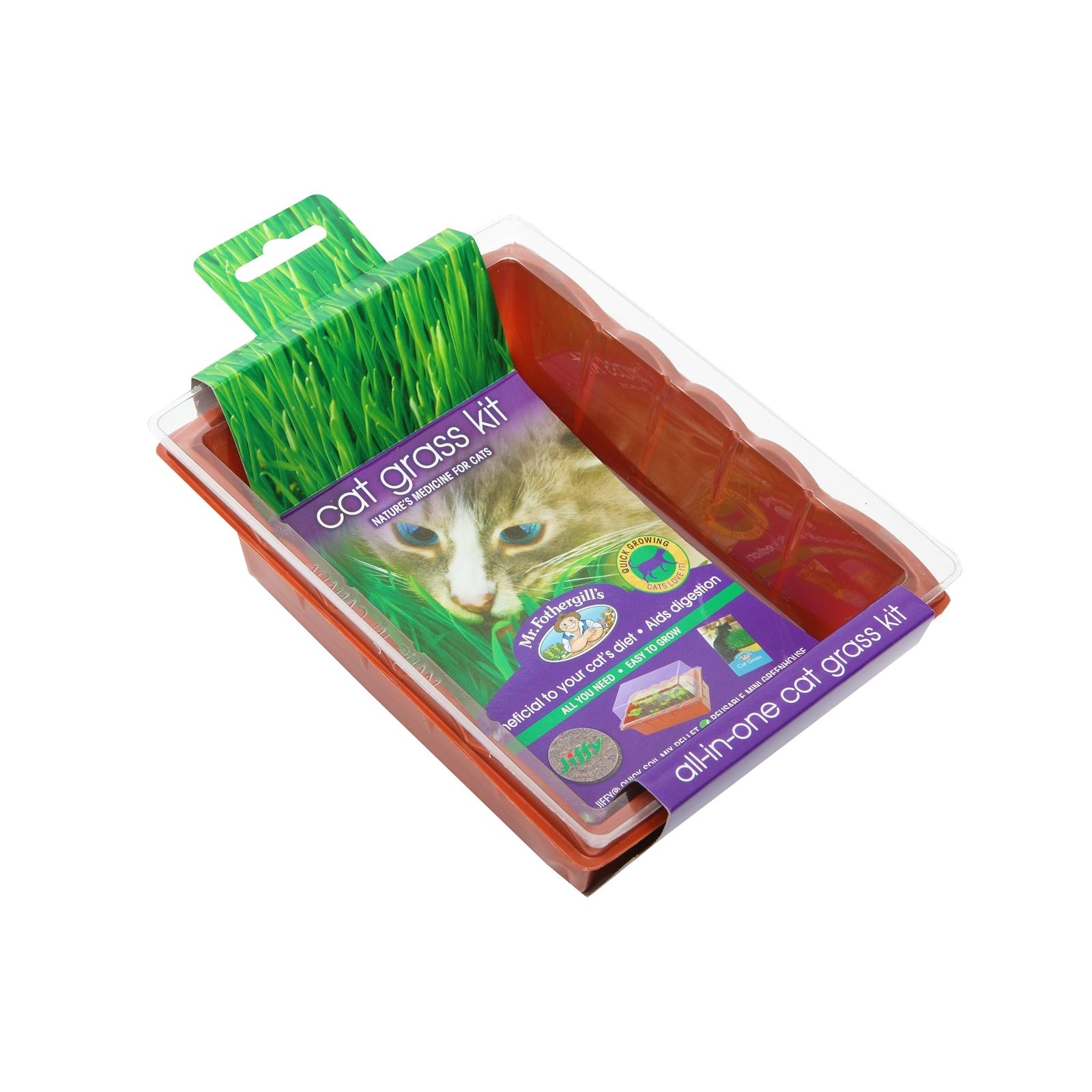 Mr Fothergills Cat Grass Seed Raiser Kit