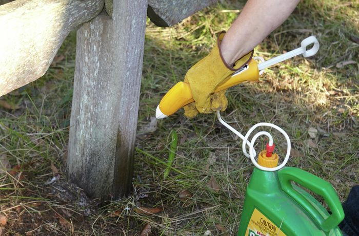 A person spraying weed killer beside a fence post