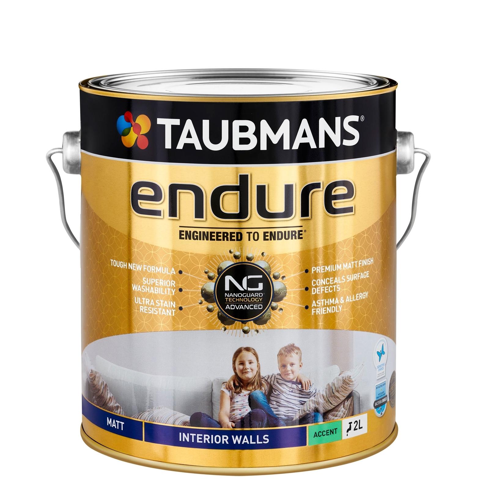 Taubmans Endure Matt Accent Interior Wall Paint - 2L