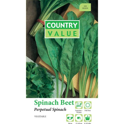 Country Value Perpetual Spinach Beet Seed