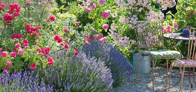 metal outdoor setting in a cottage garden