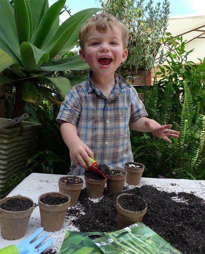 Child filling jiffy pots with soil in preparation for seeding