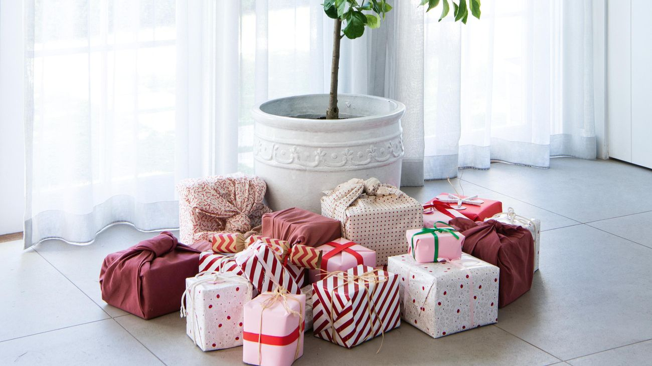 White pot with lemon tree, surrounded by gifts.