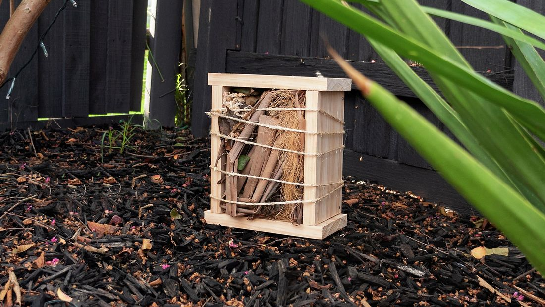 Four pieces of timber stuck together as a square and filled with bark and sticks, wrapped in twine