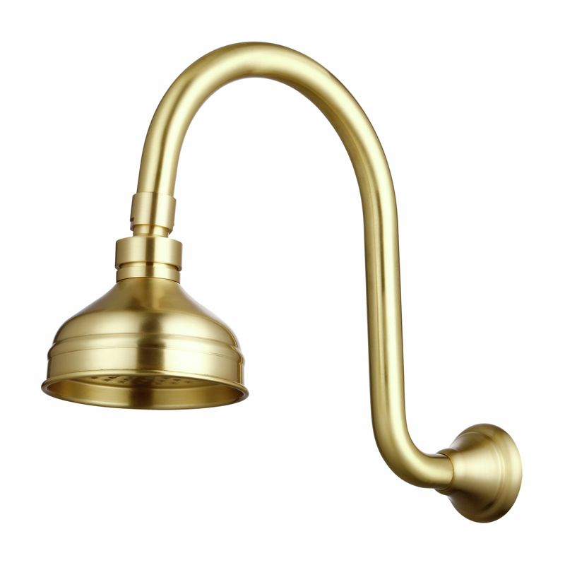 Maestro Brass Wall Curved Shower Arm And Head