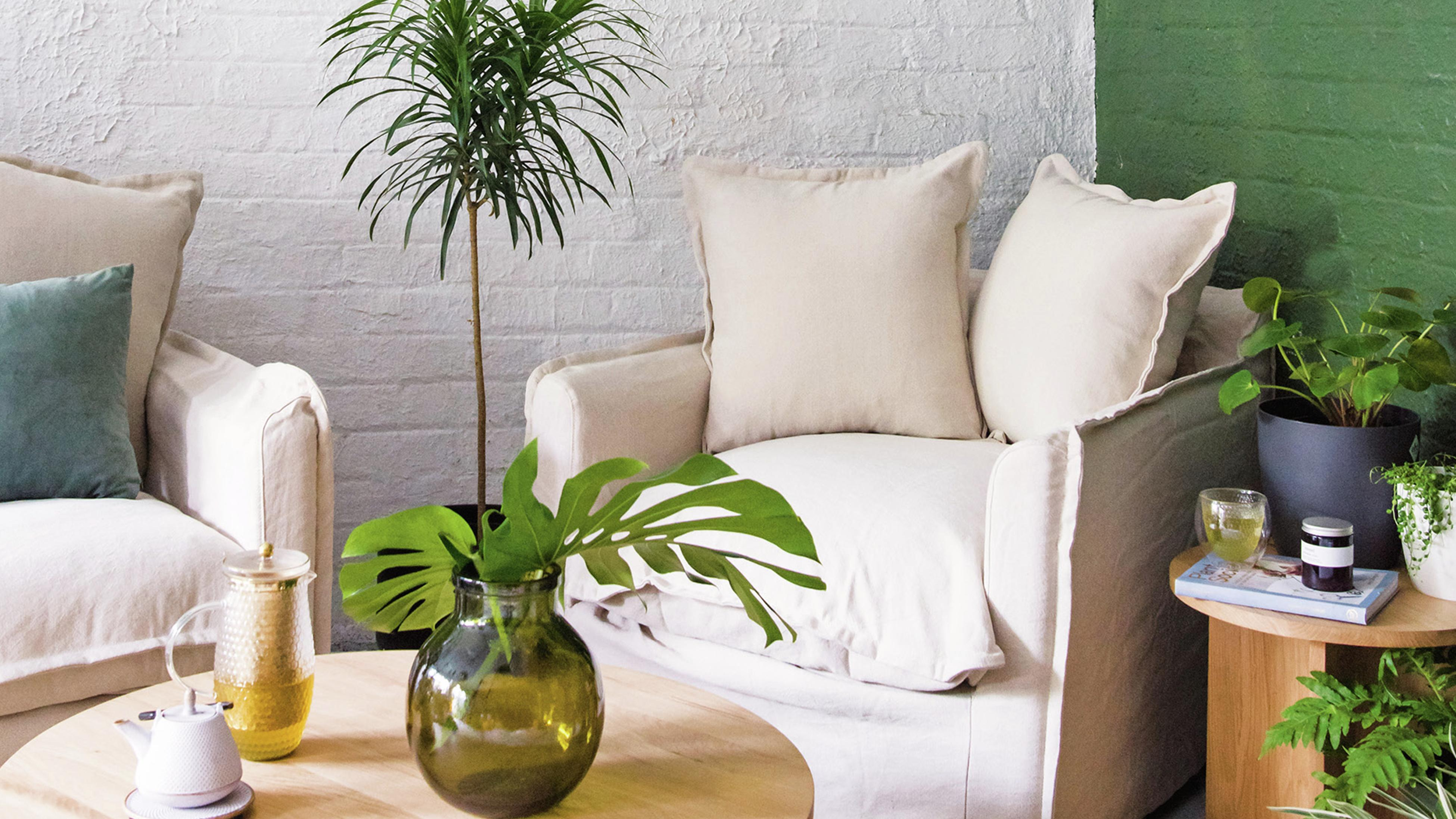 White armchairs in a living room full of indoor plants