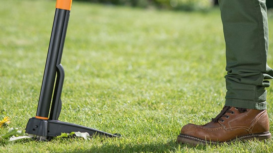 A weed removal tool in the grass beside a person's shoes.