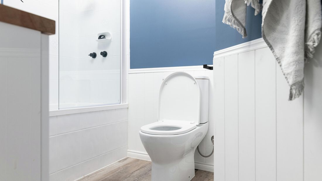 DIY Advice Image - How to clean a dirty toilet. G Drive blob storage upload.