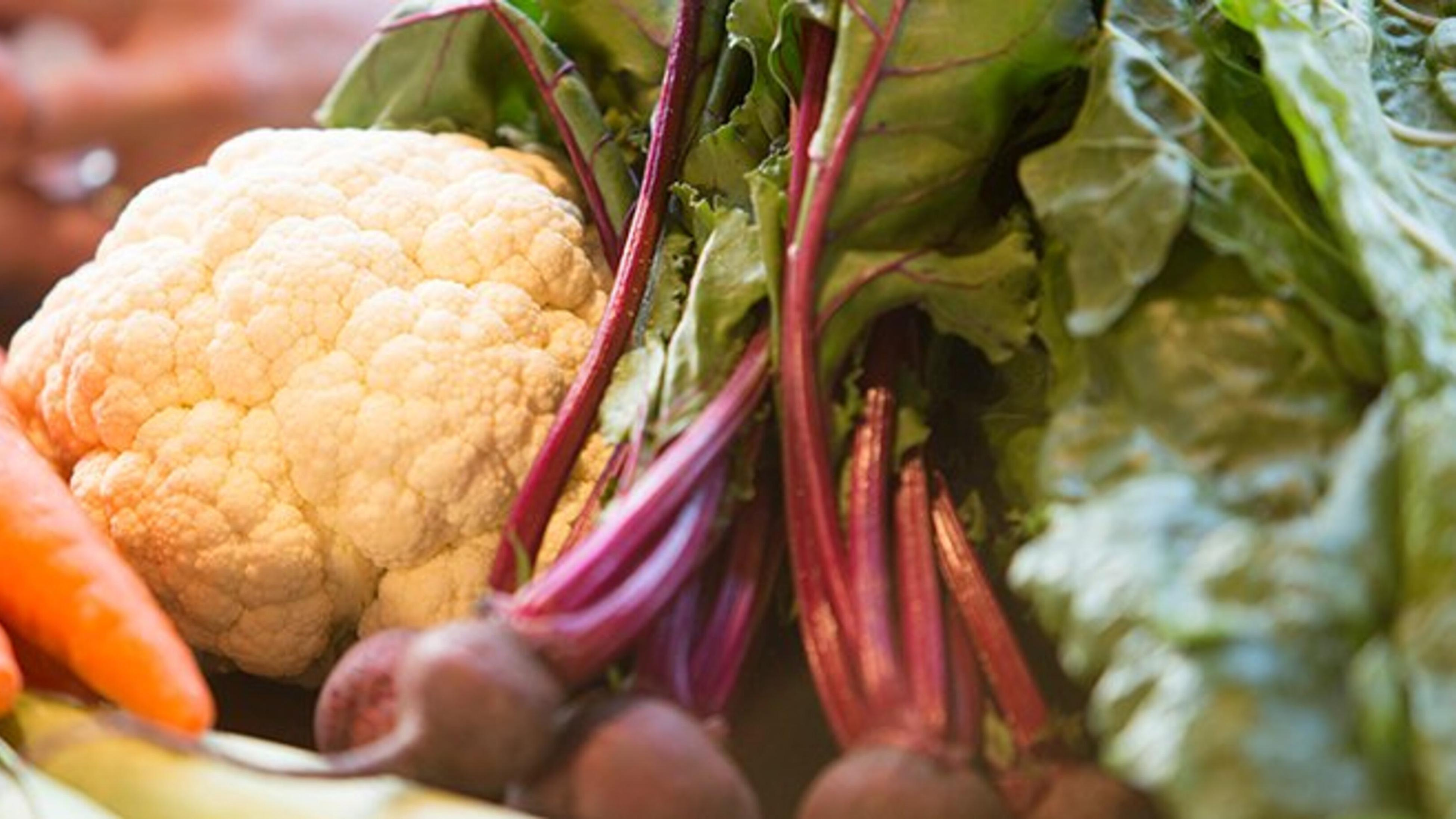Harvested vegetables, including cauliflower, beetroot and carrots.