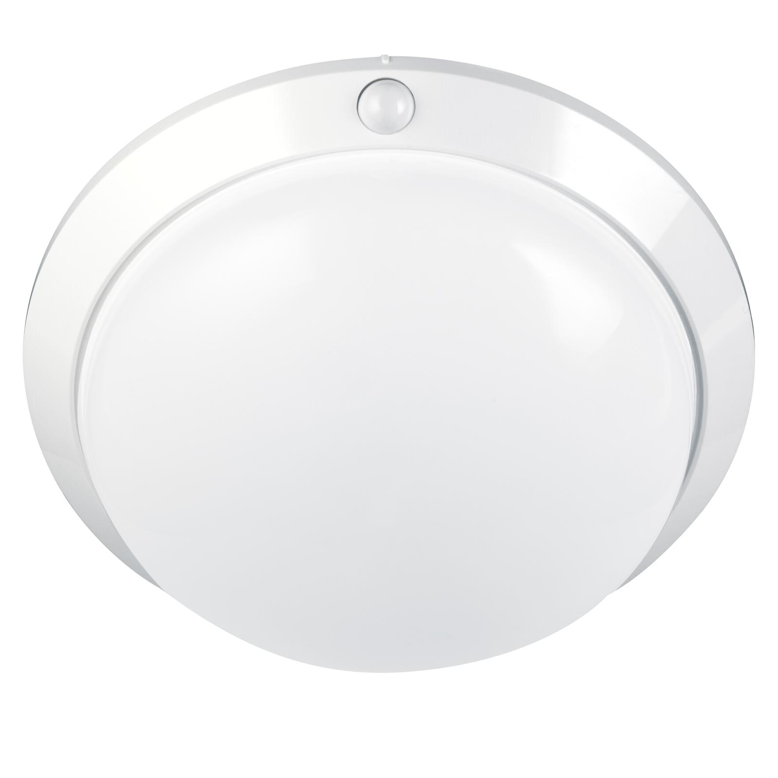 Arlec D.I.Y. Oyster Sensor Light