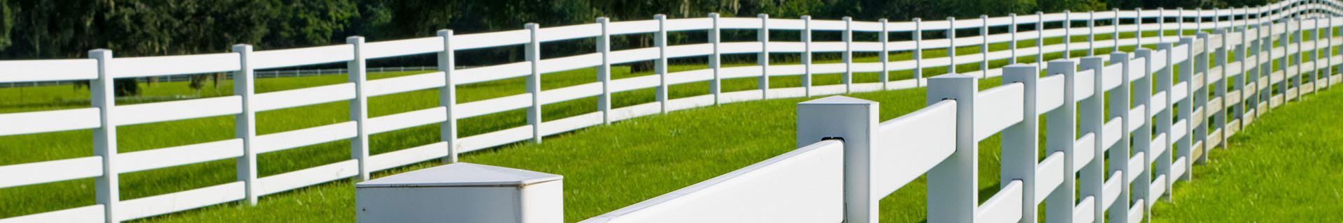 Paddock with white picket fencing.
