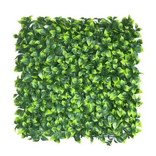 UN-REAL 50 x 50cm Artificial Hedge Tile - Pittosporum
