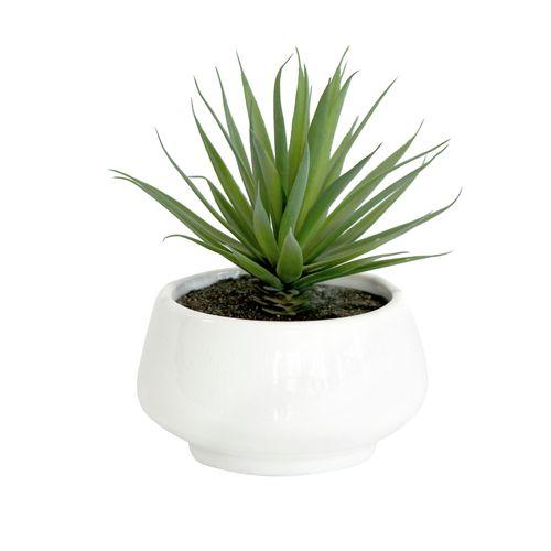 UN-REAL 21cm Artificial Yucca In White Pot
