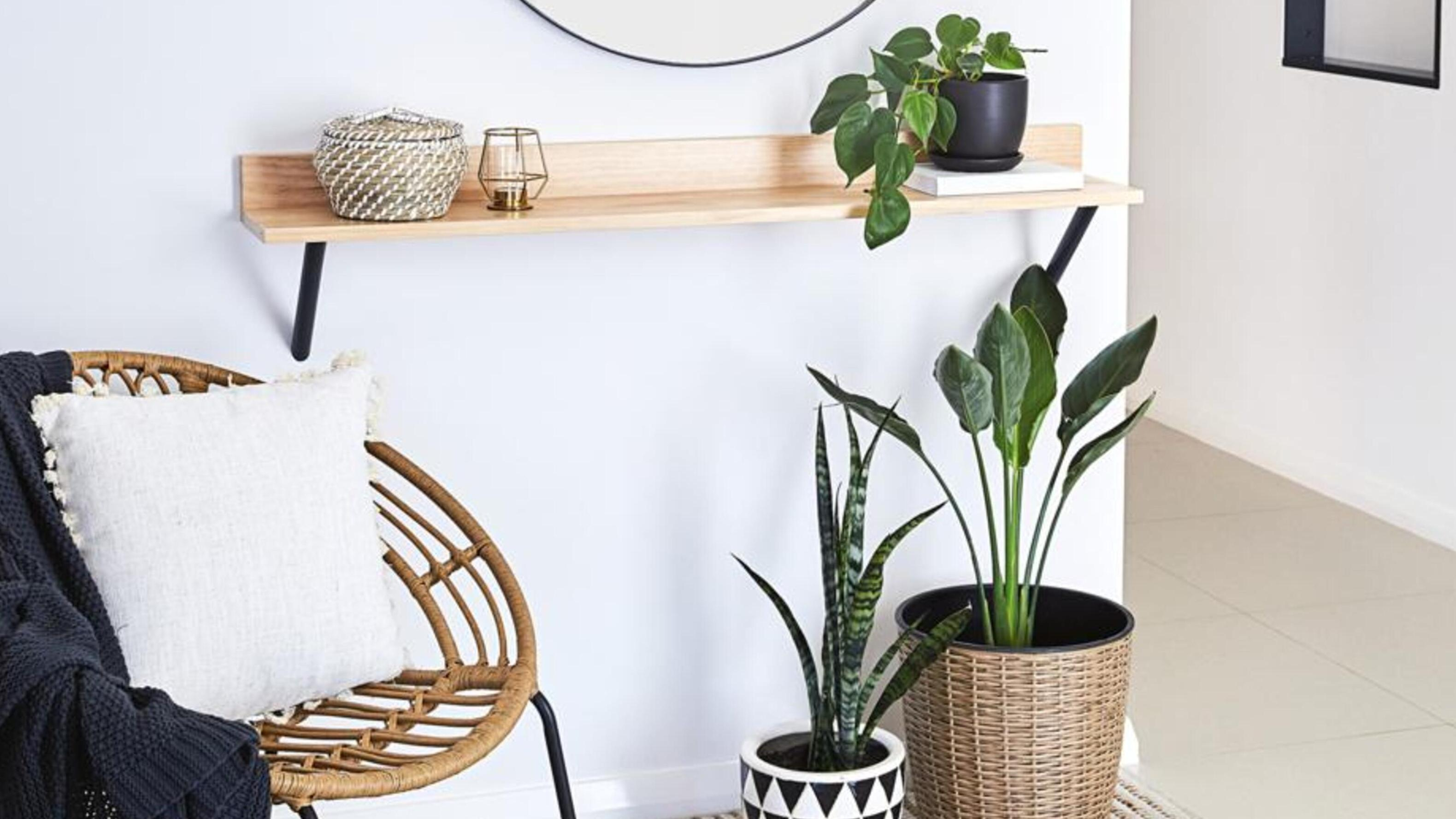 Wall with timber shelf and plants on it, chair with cushion.