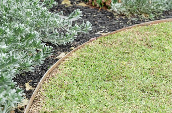 A healthy lawn next to a garden covered with mulch separated with garden edging