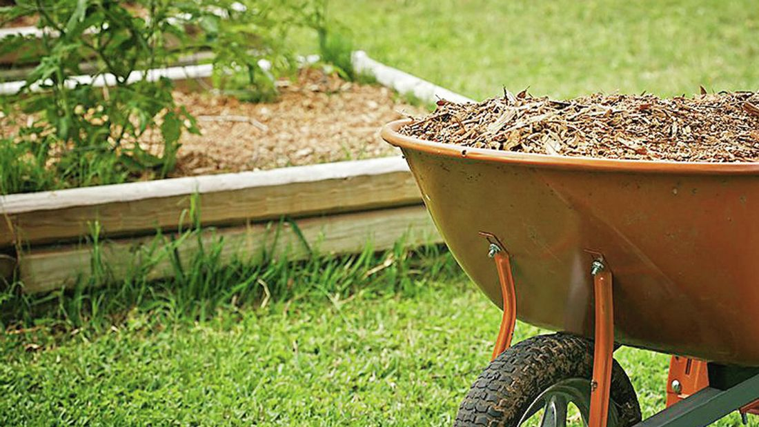 Close up of a wheelbarrow filled with mulch in a garden.