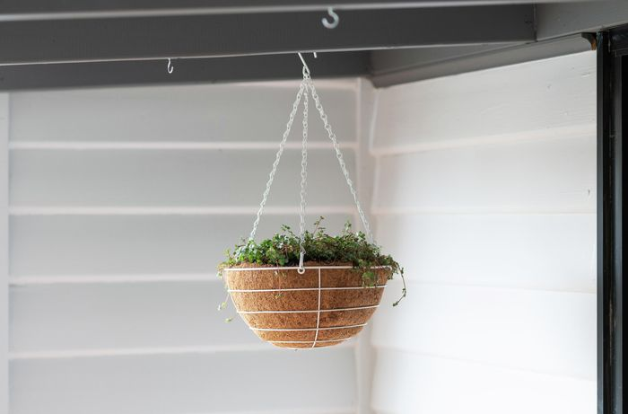 A basket containing a potted plant hanging from a patio roof