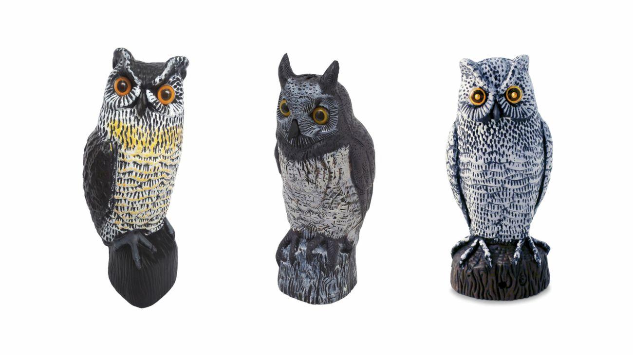Three owl statues