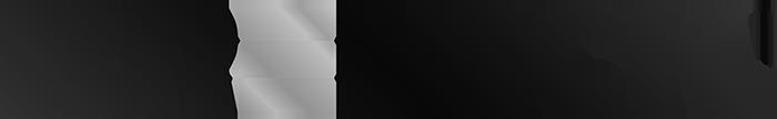 bremick logo black and white