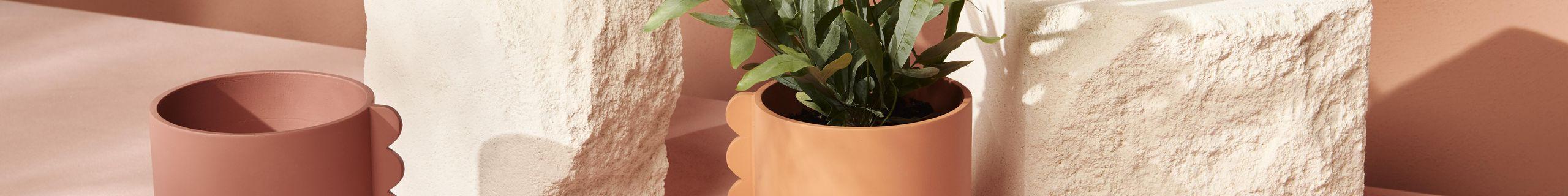 Feature Pot_Frill