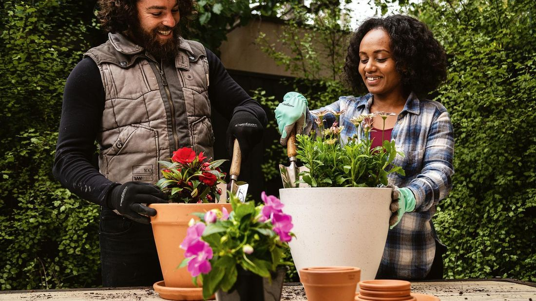 Man and Women smiling as they plant some pot plants in white and terracotta pots