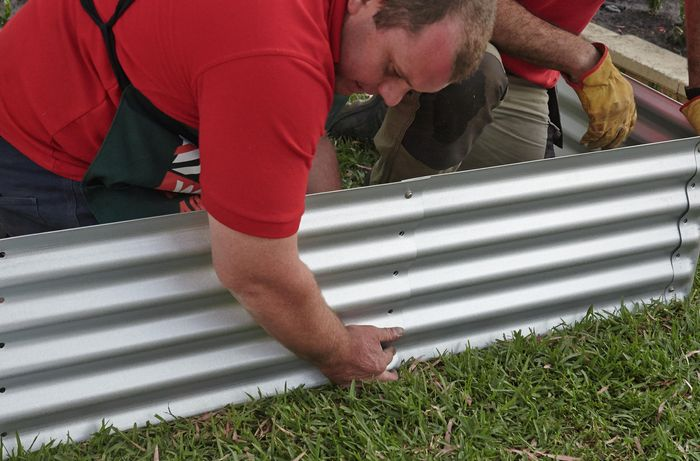 Person putting sides of corrugated iron garden bed in place.