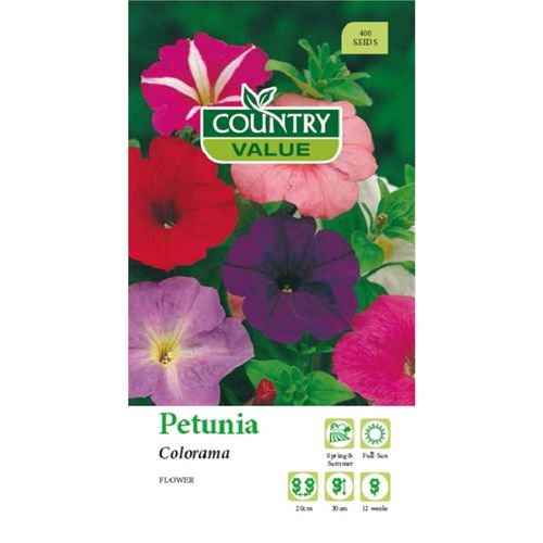 Country Value Seed Petunia Colorama