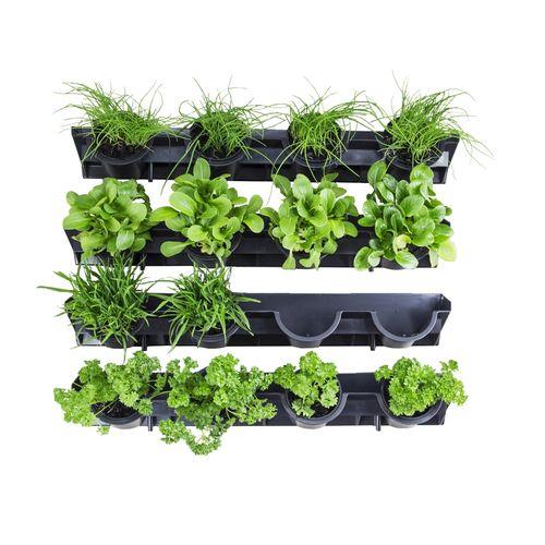 Holman Pixel Pot GreenWall Vertical Garden